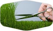 Precise lawn cut